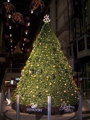 商场中的圣诞树