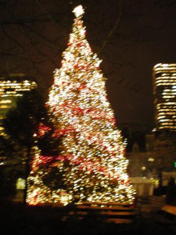 多伦多市政府前的圣诞树