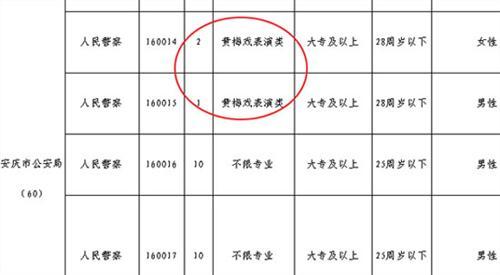 """安徽安庆市公安局2009年招录""""黄梅戏表演类""""专业公务员"""