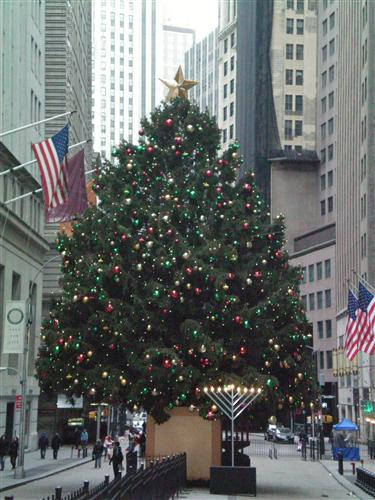 华尔街上的圣诞树