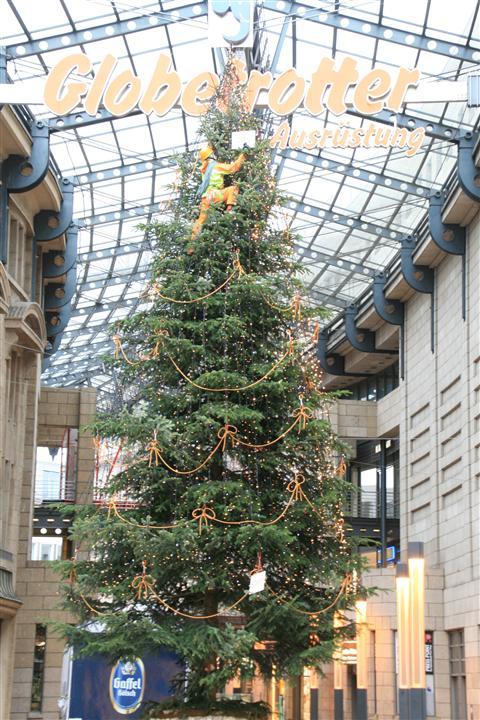 科隆街头的圣诞树