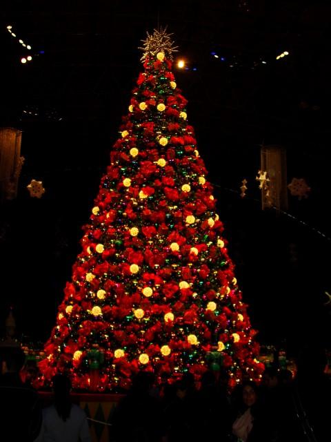 芝加哥 Navy Pier 内 Winter Wonder Fest 的圣诞树